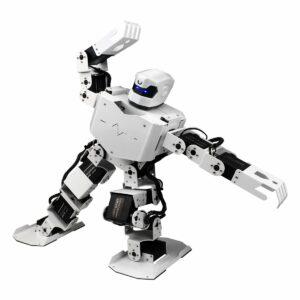 Humanoid Dancing Robot Robo-Soul H3S
